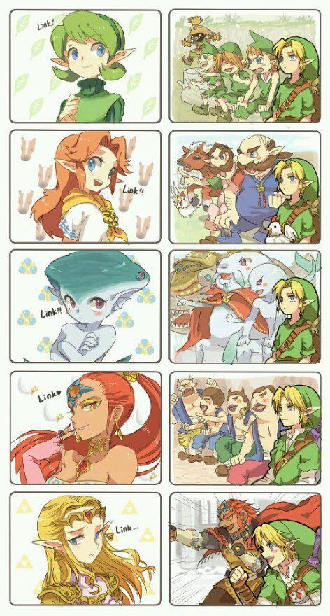 It's funny because through out the whole game they show you that they like you but he's like nope I'm going with the girl I met once and talks to me dressed like a dude..... Yup the hero of hyrule everybody!