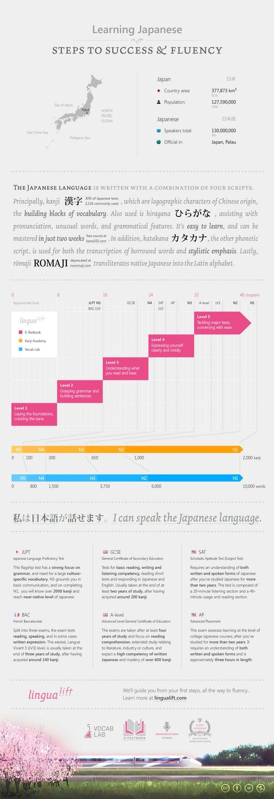 Learn Japanese #Infographics