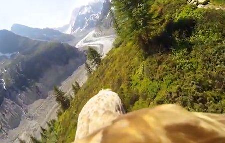 Voler comme un aigle - via une GoPro [video] - http://www.2tout2rien.fr/voler-comme-un-aigle-via-une-gopro/