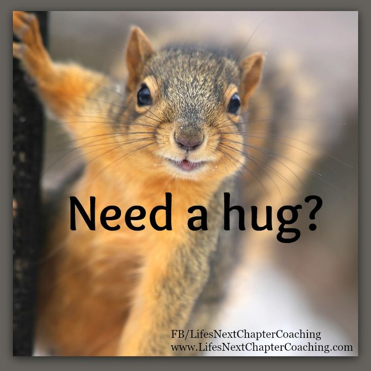 Need a hug? Find more inspirational quotes at https//www