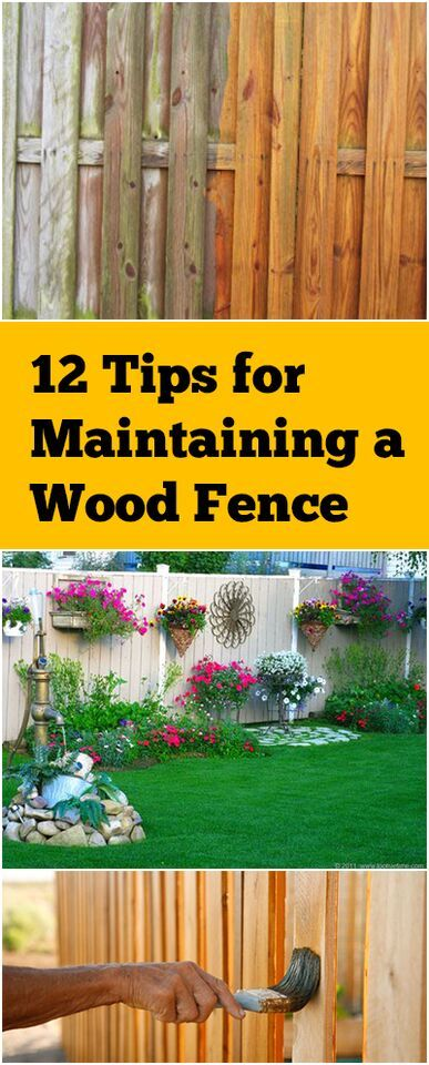 12 Tips For Maintaining A Wood Fence Wood Fences Fences And Woods