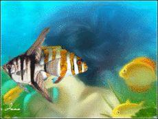 Подводный мир (Нажимай на рыбки....путешествуй по подводному миру,слушай море)