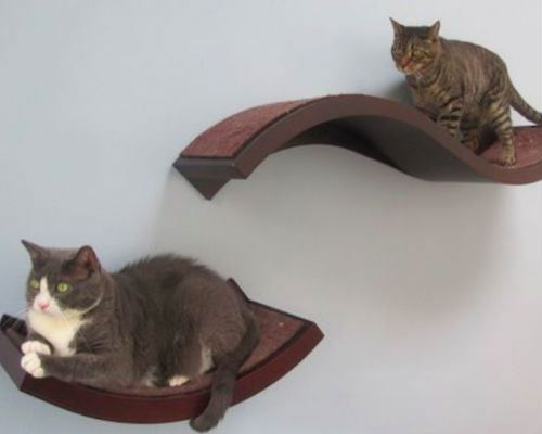 cat-wall-shelves
