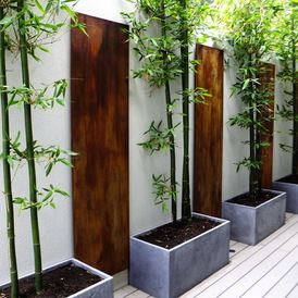 Grey planter boxes with bamboo. Rusted wall panels in between. Visually enhances a plain white wall