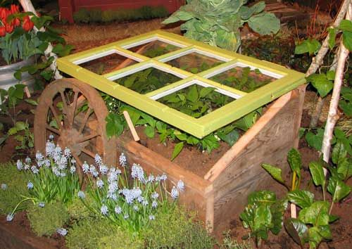 1000 images about Cold Box Gardening on Pinterest Gardens