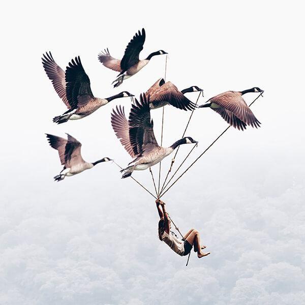 Pássaros e menina. Foto manipulação de Luisa Azevedo
