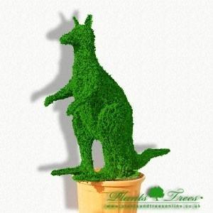 Kangaroo Tree! :D