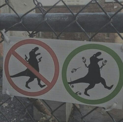 Dinosaurs, what and what not to do.