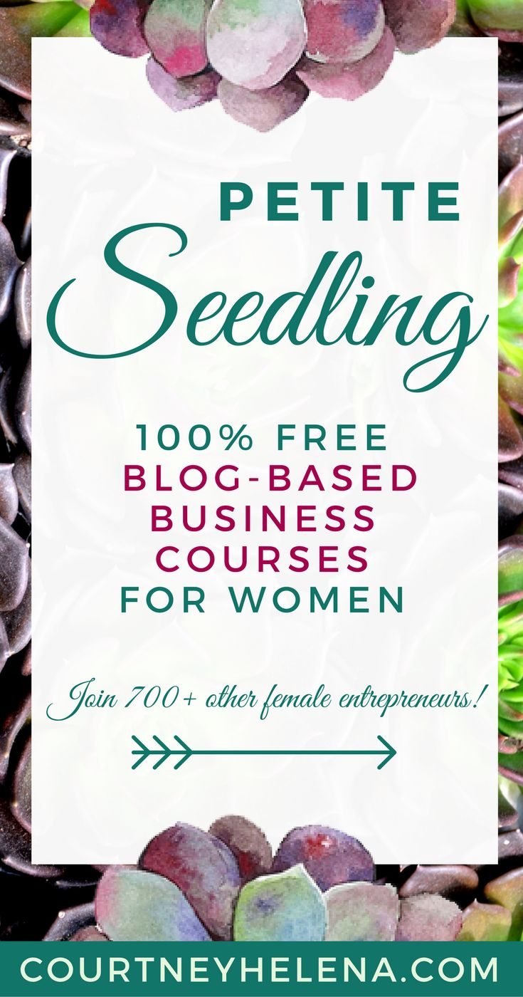 🌺 I offer free group-coaching-style courses for caring women who have newer blog-based businesses. This month's course is Just-Enough Blogging, and it's about how to know what to do - when to do it - and how much is just enough to grow and maintain a profitable blog-based business. Hope to see you there! #blogging #business #courses #women #entrepreneur