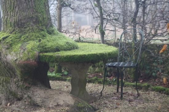 mossy table, Le Vieux Logis, France