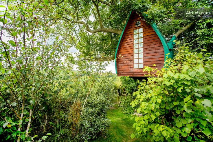 Tree Sparrow House, Cornwall. - Airbnb