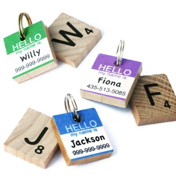 Hey, I found this really awesome Etsy listing at http://www.etsy.com/listing/101904931/hello-my-name-is-classic-scrabble-dog