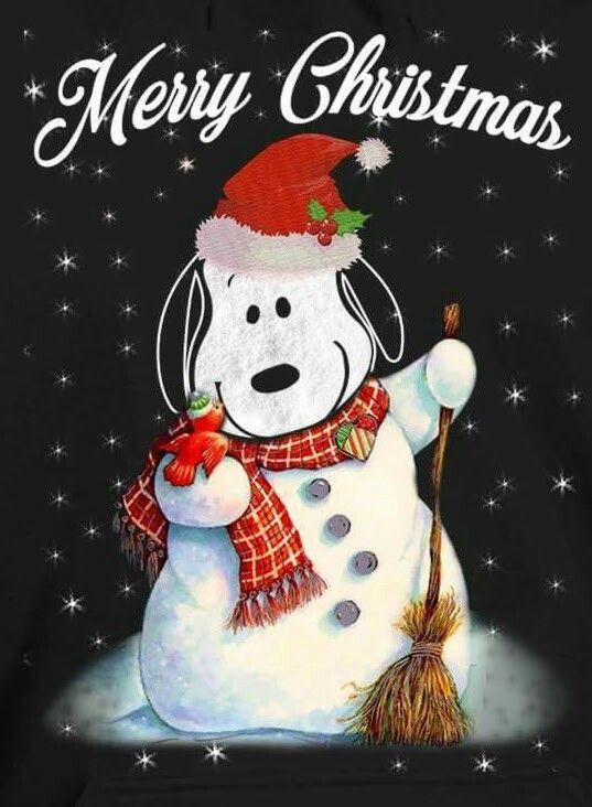 1883 Besten MERRY CHRISTMAS Bilder Auf Pinterest Neujahr