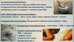 Мобильный LiveInternet полезные рецепты для декорирования и лепки | Belenaya - Дневник Belenaya |