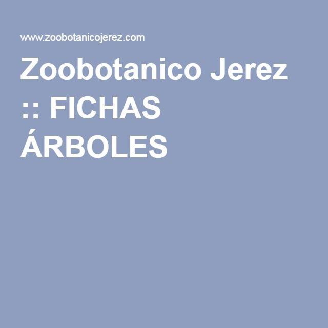 Zoobotanico Jerez :: FICHAS ÁRBOLES