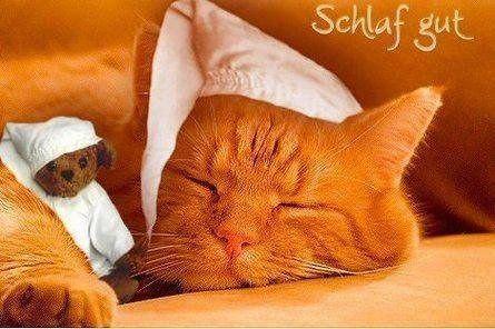 ich wünsche euch noch einen schönen abend und später eine gute nacht - http://www.1pic4u.com/1pic4u/guten-abend-bilder/ich-wuensche-euch-noch-einen-schoenen-abend-und-spaeter-eine-gute-nacht-132/