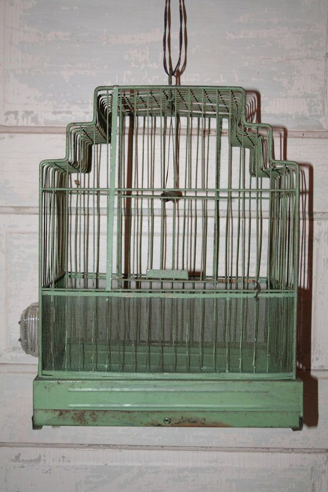 Top 25 Ideas About Hendrix Bird Cages On Pinterest