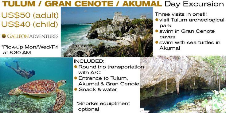Day tour in Tulum, Gran Cenote & Akumal in Mexico
