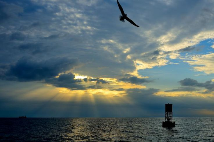 Saw this view while we were fishing offshore of St Petersburg, Florida on a beautiful weather morning.