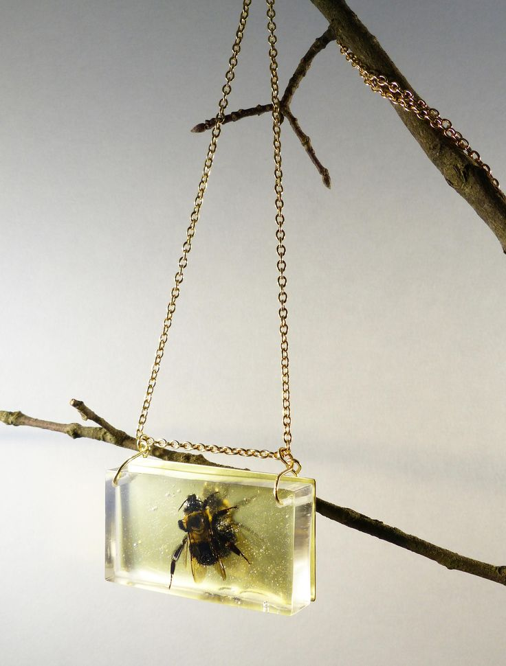 Bumble bee necklace with brass, bumble bee jewelry, bee necklace, bug jewelry, insect jewelry