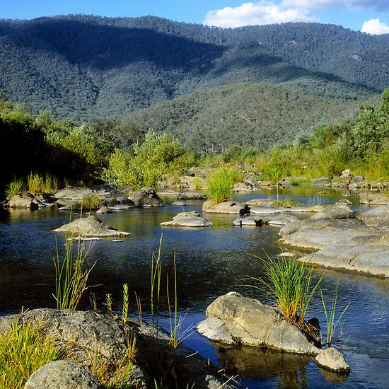 Snowy River, New South Wales