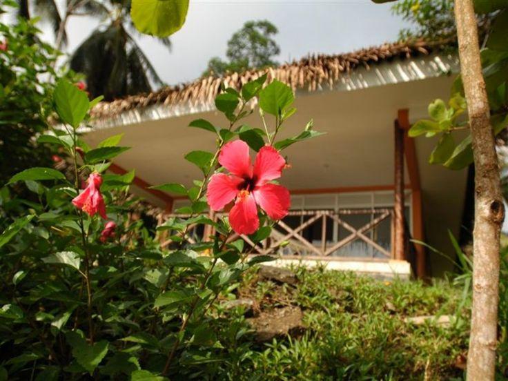 Traveling Colombia | Isla Gorgona