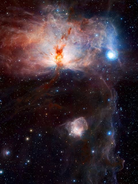 ESO image of the Flame Nebula, NGC 2024. Flame Nebula Wallpaper (by sjrankin)