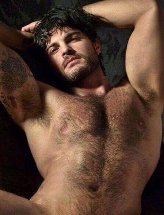 Hairy Men Territory 31