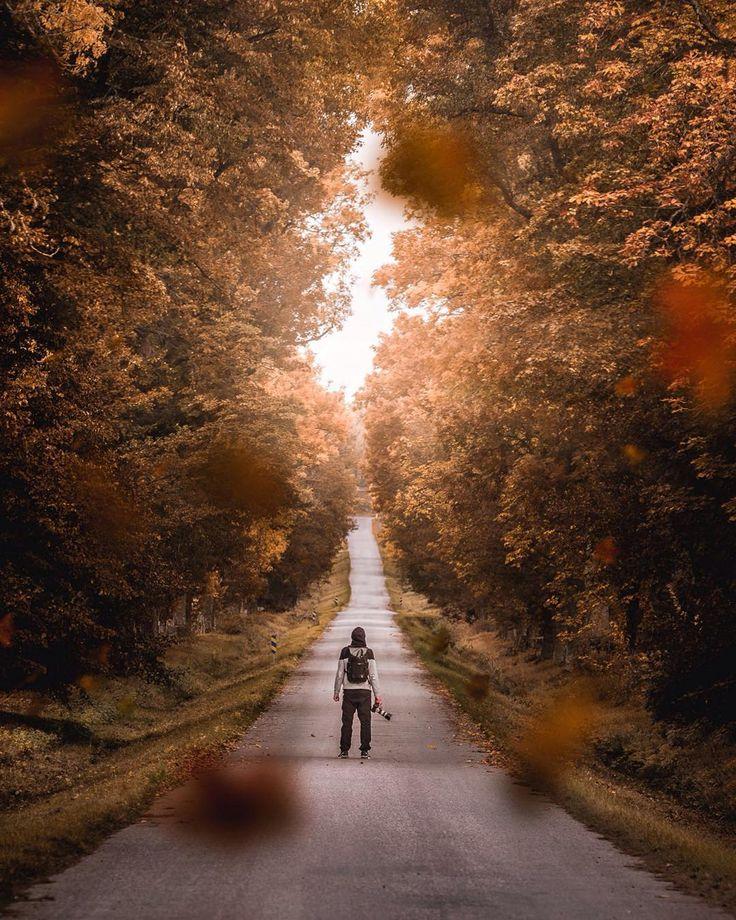 In autumn we trust.   In frame @visualoptic   #krusenbergsherrgård #uppsala #sweden #fujifilm_xseries