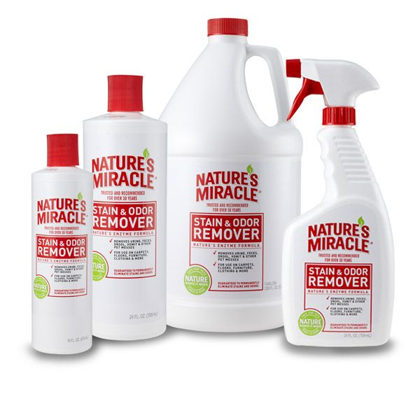 Shop Nature's Miracle pet stain and odor removal products, including our Original Stain & Odor Remover for your pet's messiest jobs.