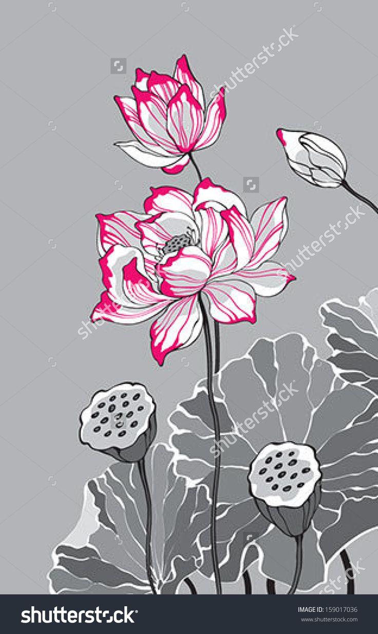 Big pink lotus on grey background