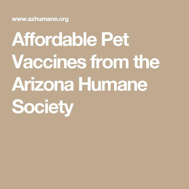 Arizona humane society project safe house