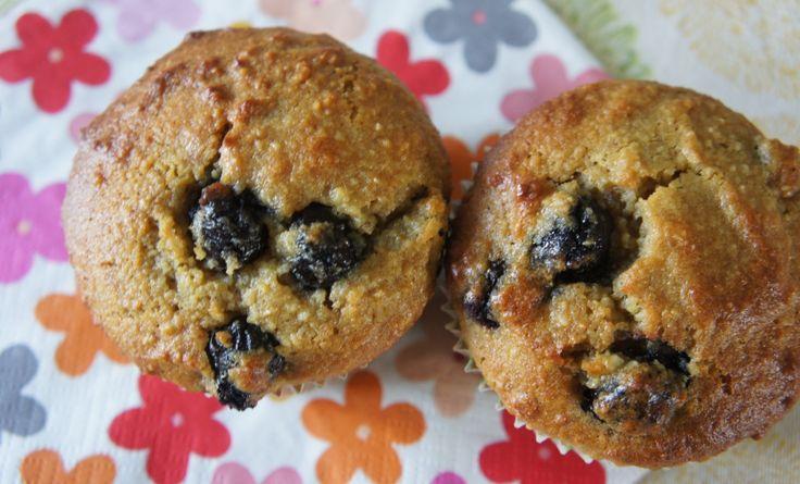 Glutenvrije cake van kokosmeel en tapioca, met blauwe bessen, citroen- en kokosrasp