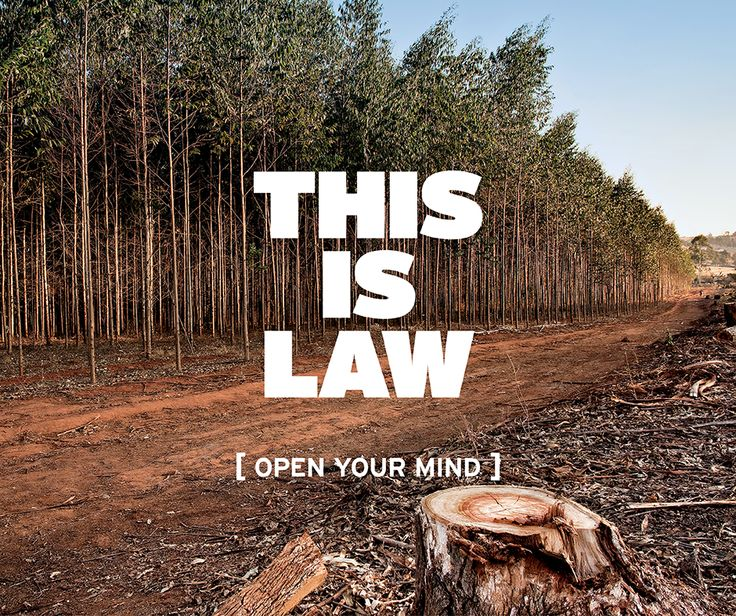 This is law: at York U students can study the intersection of the environment and law through the environmental justice and sustainability clinical program. Learn more about York's unique law programs. #OpenMindYU