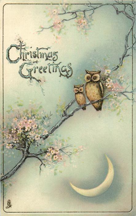 VINTAGE CHRISTMAS GREETINGS  two owls in blossom tree, quarter moon Pinned by www.myowlbarn.com