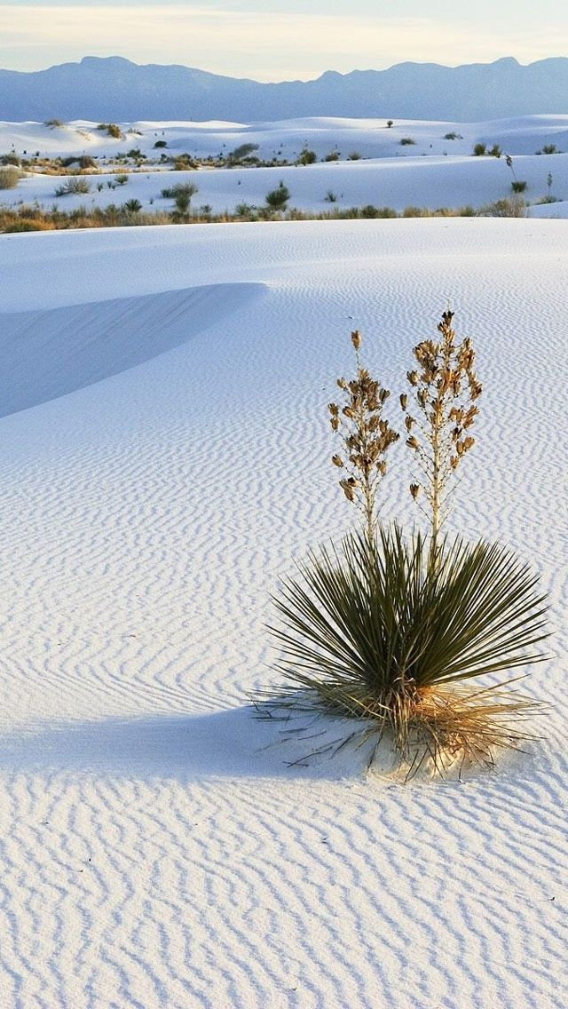 White Desert Android Wallpaper HD