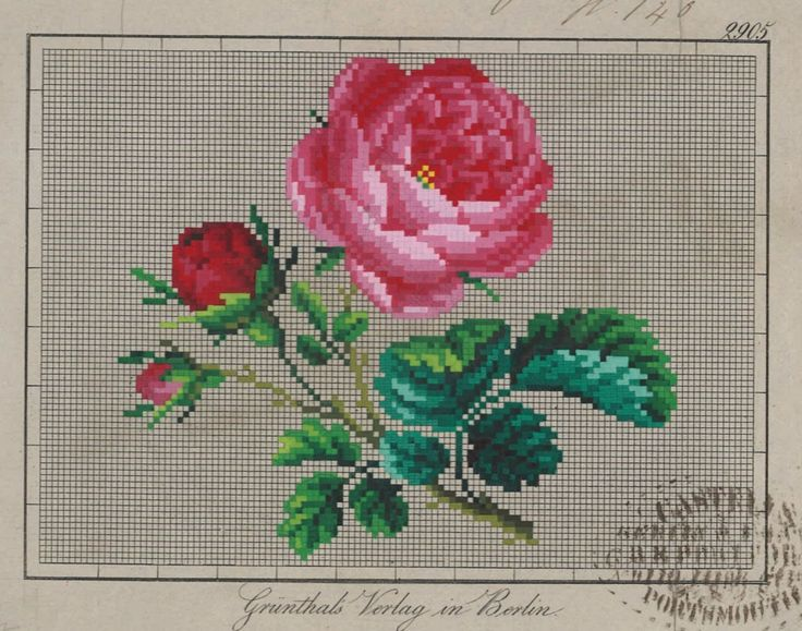 A Berlin WoolWork Rose Pattern Produced By Grunthals Verlag In Berlin