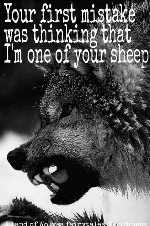 IT MAY SEEM SO, BUT I WON'T FOLLOW THE CROWD, I'M MY OWN PERSON, IF THIS MAKES ME A LONE WOLF, SO BE IT!!!!