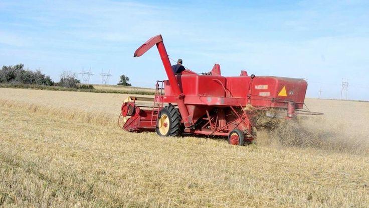 210 best grain harvest images on pinterest vintage farm for Garage ford massy