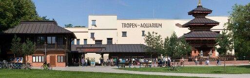 Tierpark Hagenbeck Tropen Aquarium