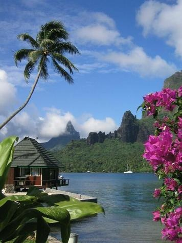 #Moorea Island, French Polynesia