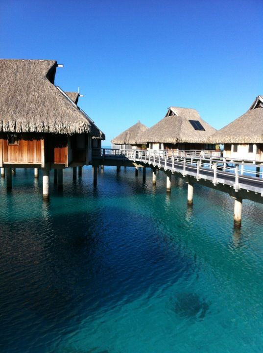 Travel to Bora Bora with Fireflies! https://www.fireflies.com/Hotel?id=466161&type=detail&searchId=694428&order=PRICE_ASC&offertype_filters=&price_filters=&star_filters=4,5&review_filters=&service_filters=&voucher_filters=1,15
