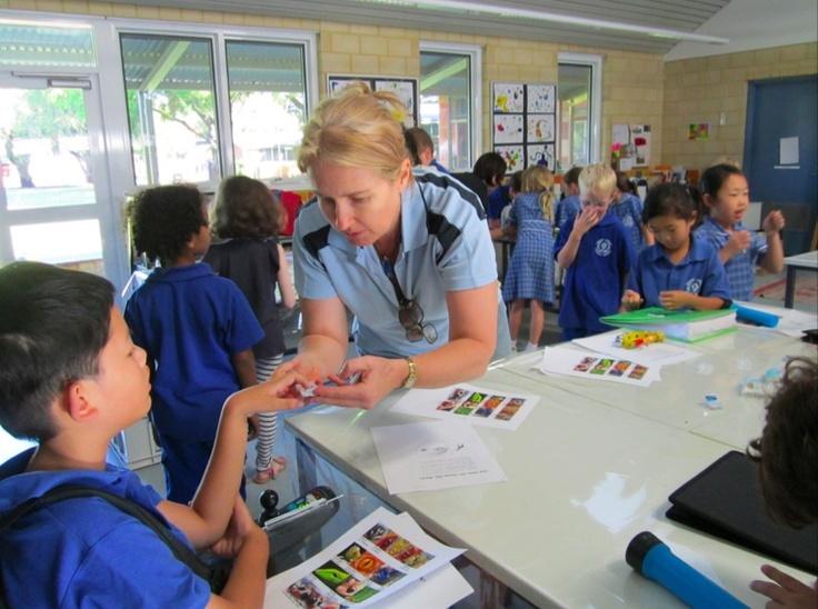 Le système scolaire australien
