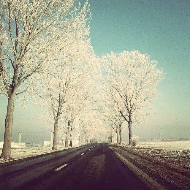 #winter #frozen #romania #prejmer #brasov #road #nature