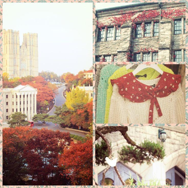 Autumn in korea-seoul,,khunghee university,,ewha womans university