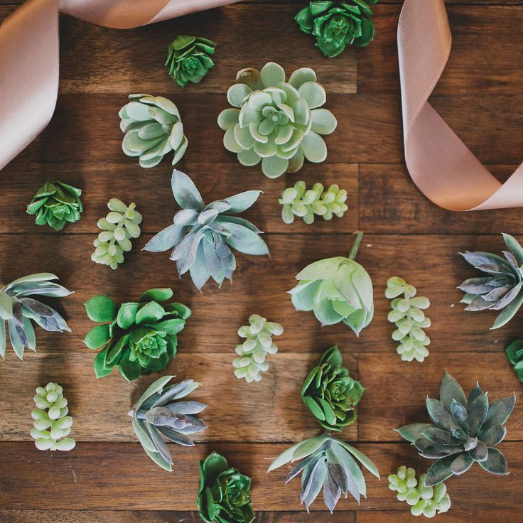 Artificial Succulents | Baby Echeveria Picks in Green | Afloral.com