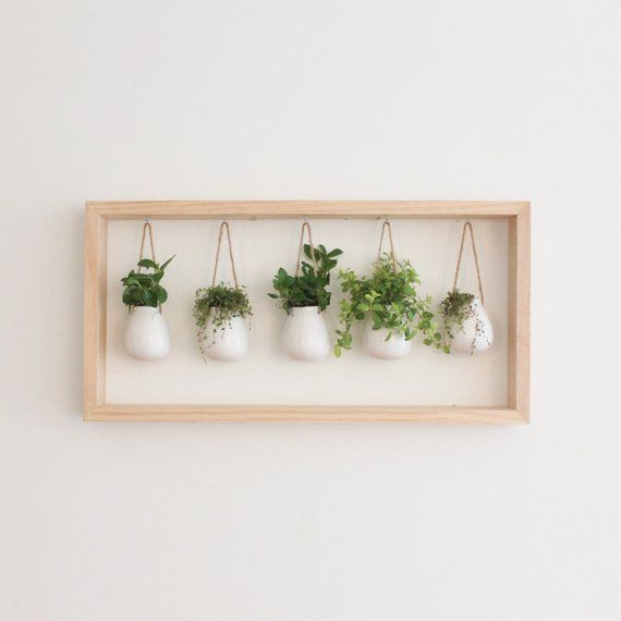 Indoor Herb Garden in Wooden Frame | Wall Mount Planter | Housewarming Gift | White Ceramic Pots | Hanging Planter | Botanical Wall Art
