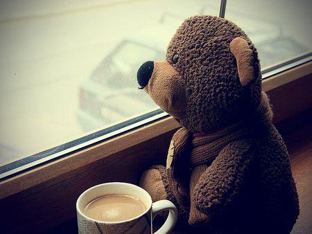 Buon giorno. #wood #wooden #colazione #breakfast #coffee #caffè #coffetime #coffelover #happy #energy #happyday #photo #buongiorno #goodmorning #bear #orsetto #orsacchiotto