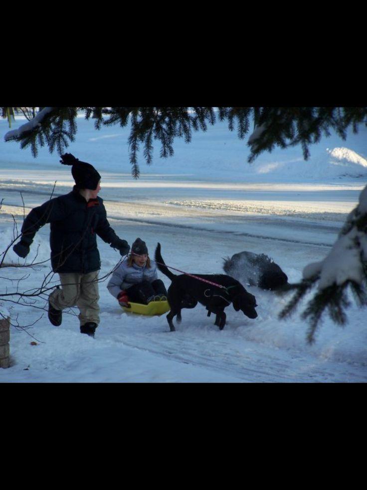 Avery and Alex - sledding fun
