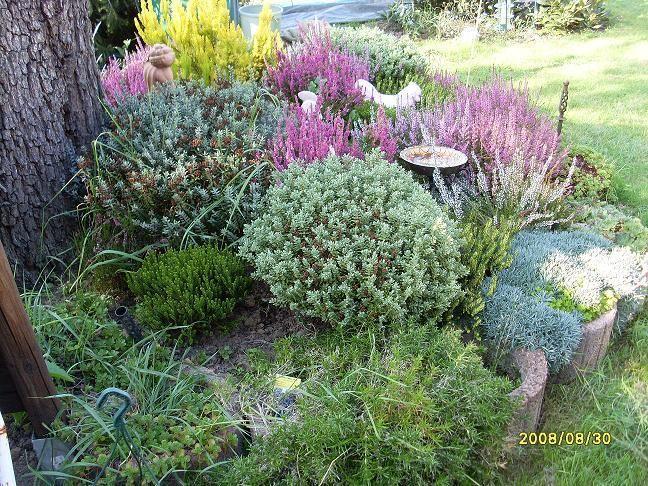 Popular Deko f r Baumstumpf Seite Gartengestaltung Mein sch ner Garten online